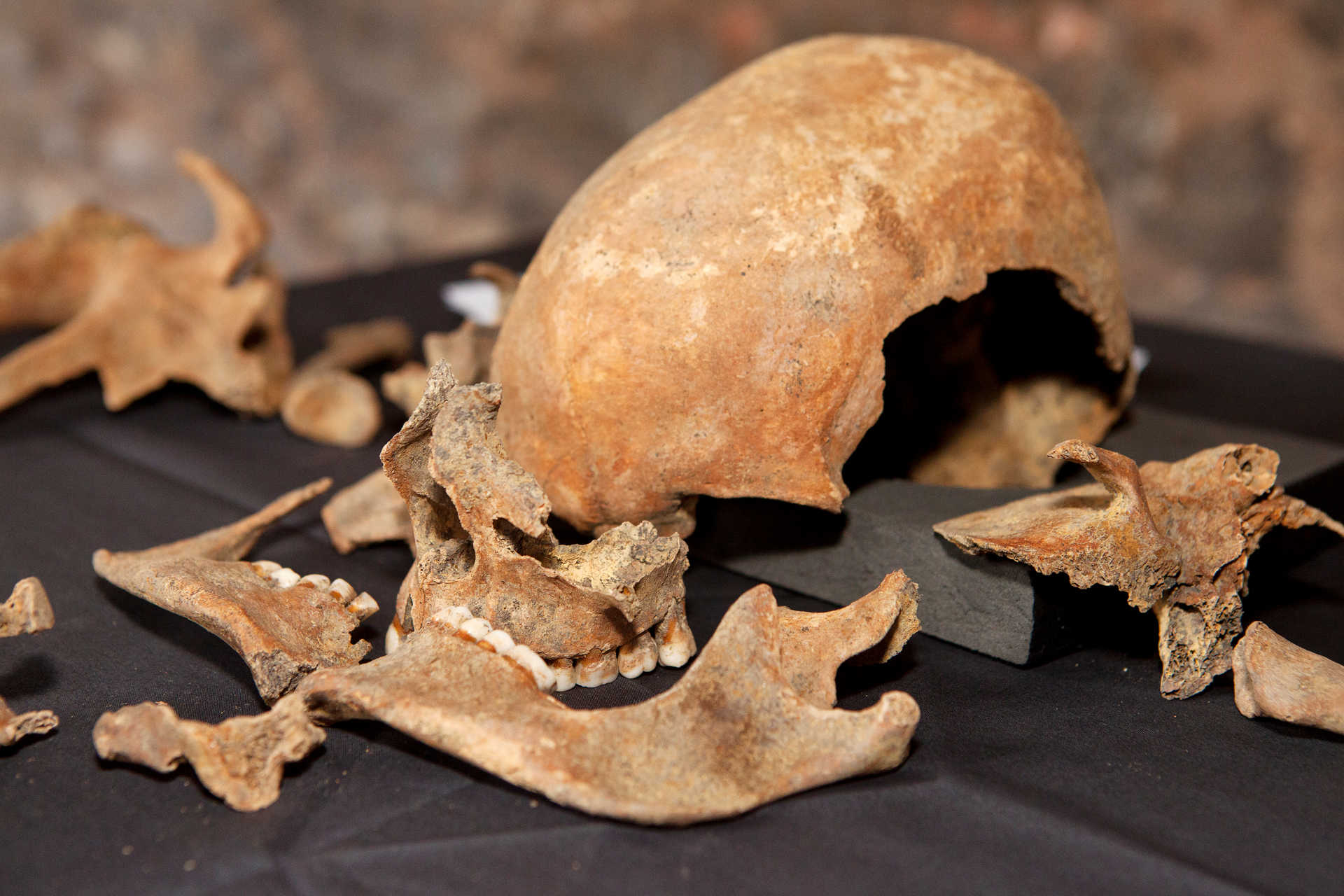 a research paper on black death